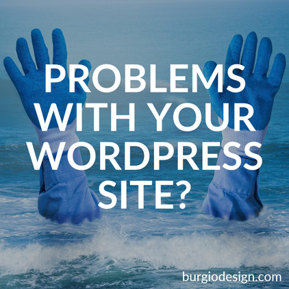WordPress Website Design Amsterdam