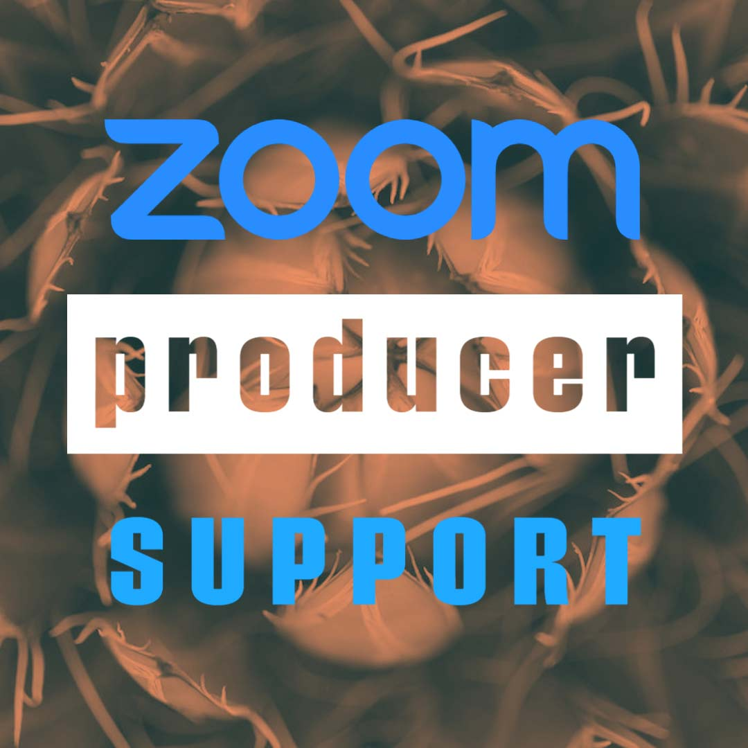 zoom-producer-specialist